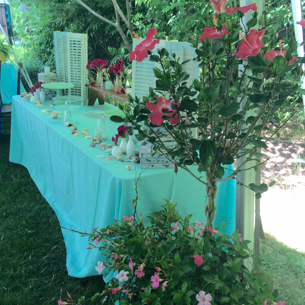Caribbean Themed Special Event-Aqua Surprise Birthday Party
