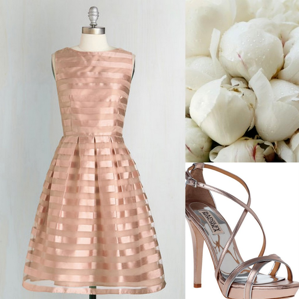 Blush Bridesmaid Dress Ideas - by Wedding Planner-Lisa Sammons Events